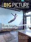 The Big Picture - June/July 2014